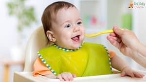 How To Select The Best Baby Food Maker